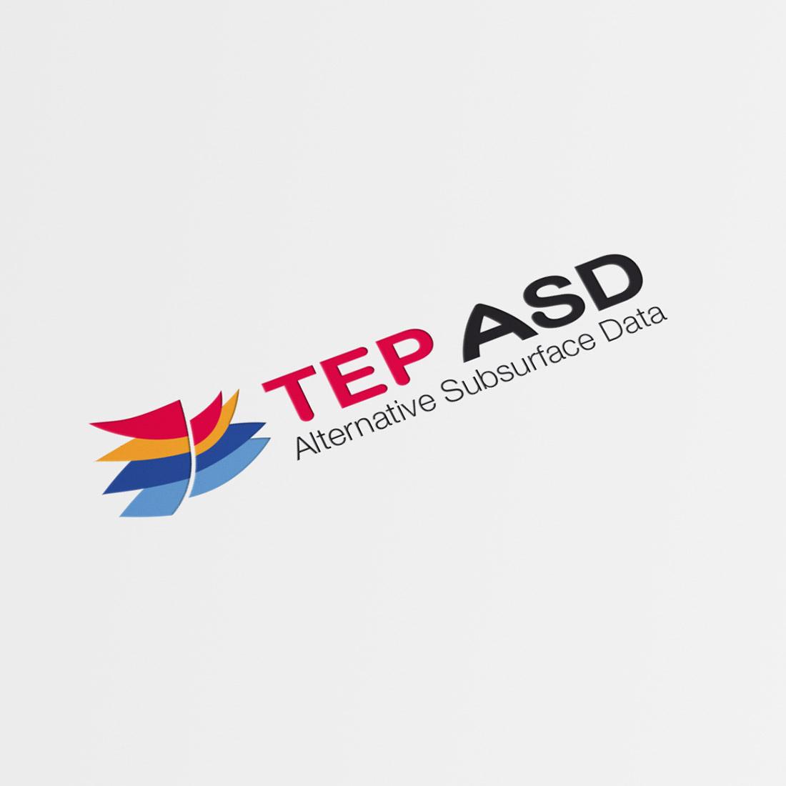 Création identité visuelle logo TEP ASD
